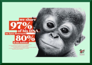 97% of DNA