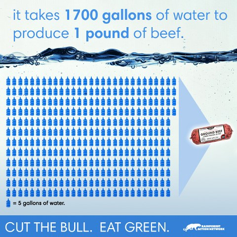 Water Beef Infographic