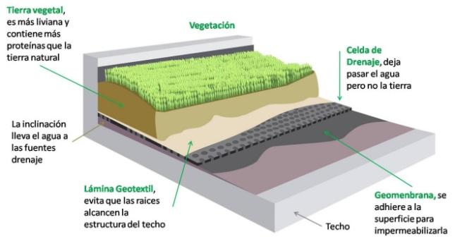 techo-verde